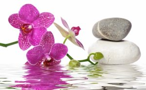 Хормонален баланс с природни методи