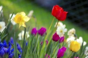 Пролетно презареждане