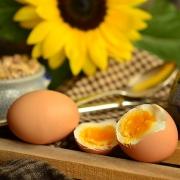 Захранване с храни алергени – кога и как?